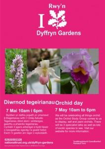 Dyffryn Gardens Orchid Day